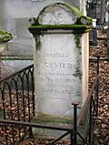 Cuvier_8_2