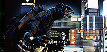 20071209_gamera_irisu_600